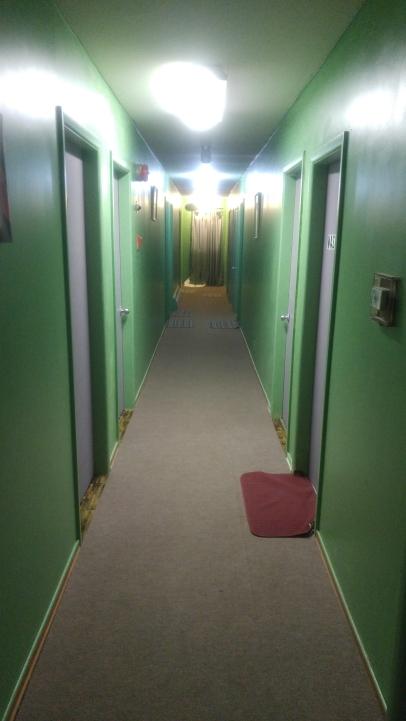 Repainted Hallway & Doors